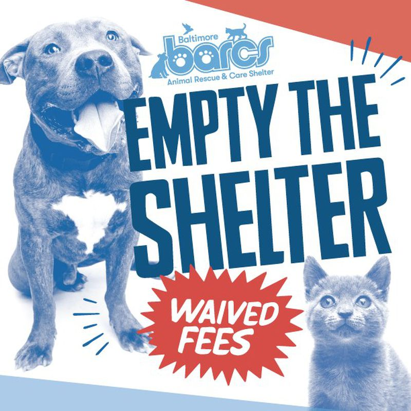 "We're Moving! Help Us ""Empty the Shelter"""